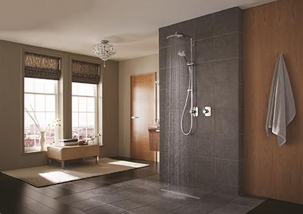 Mira Agile Adept wet room