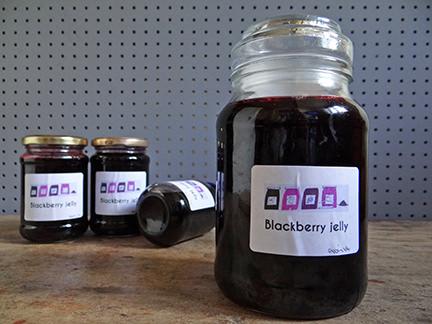 Homemade blackberry jelly in jars